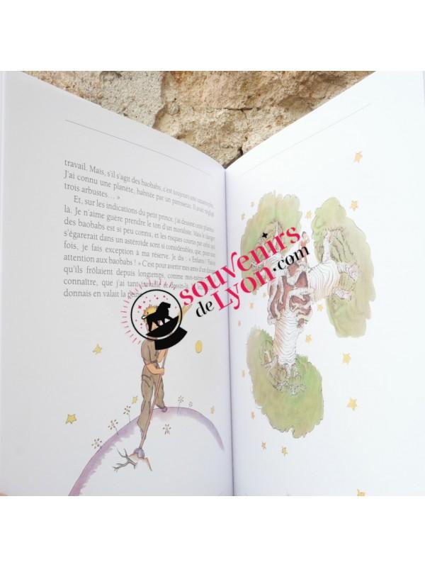 Large format book The Little Prince Souvenirsdelyon.com