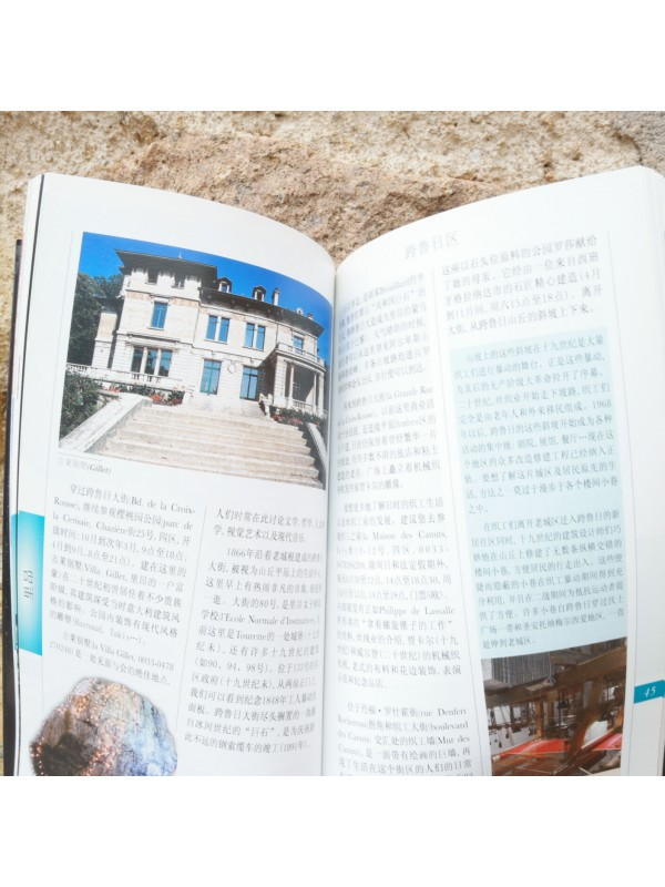 Book Lyon Guided Walks in Chinese Souvenirsdelyon.com